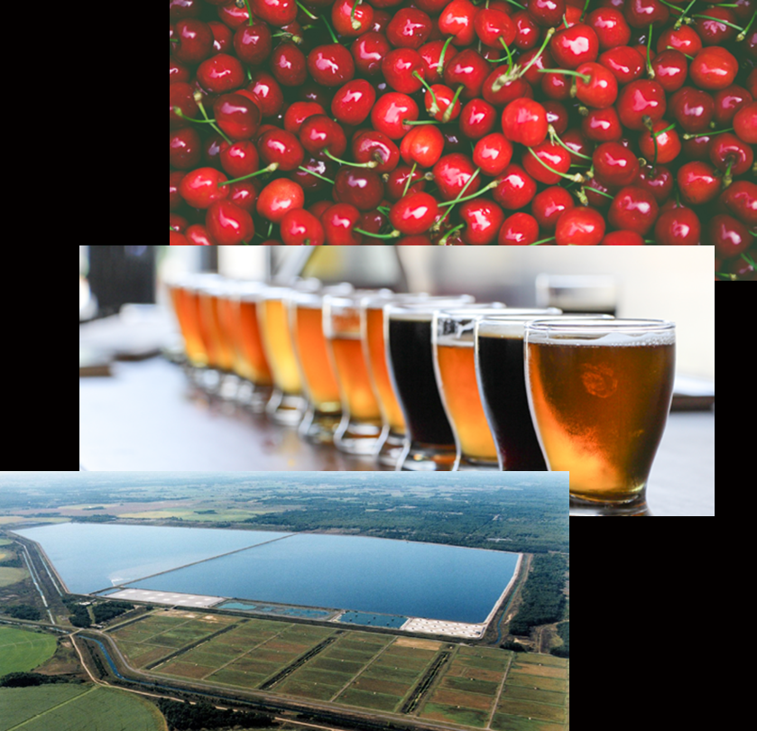 Cherries_Breweries_Wastewater